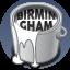 Birmingham Bling