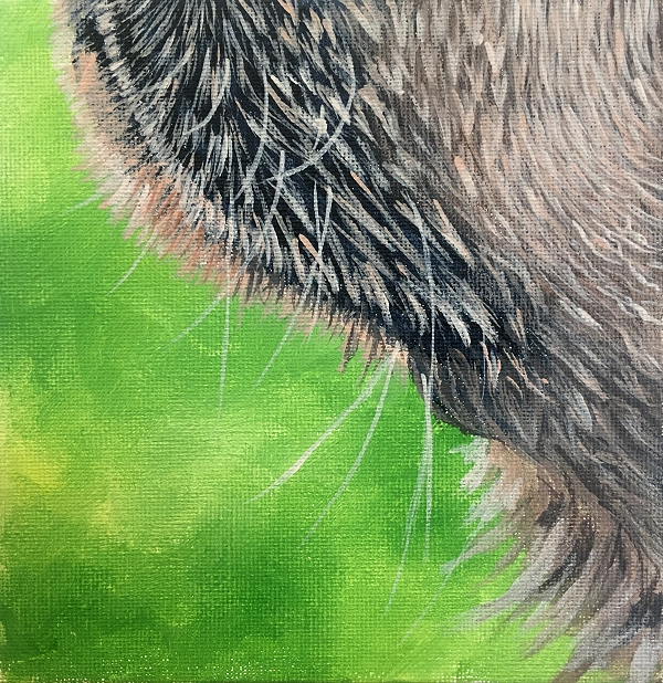 How to paint a realistic Labrador mouth with wet hair - dog painting course
