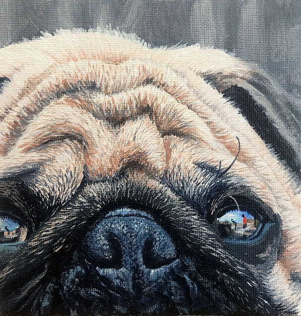 How to paint a realistic Pug with it's wrinkles and reflective eyes - dog painting course