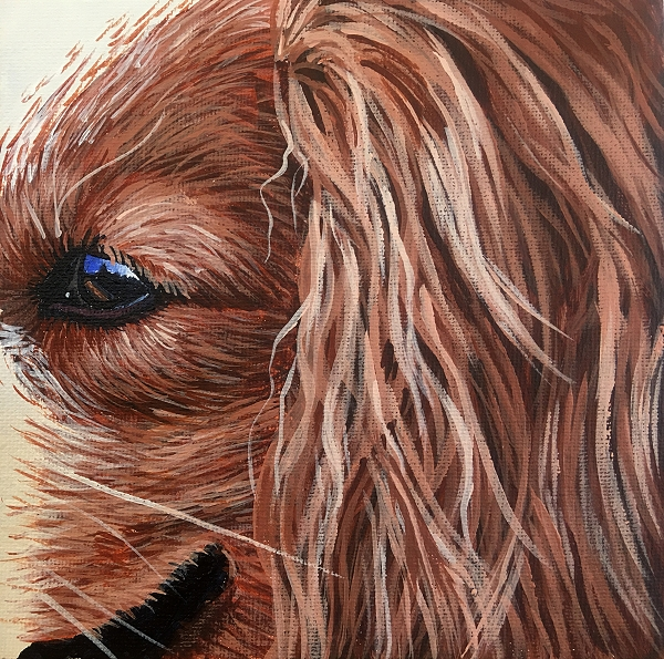 How to paint a realistic Spaniel with long matted hair - dog painting course