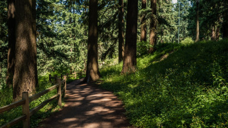 Mount Tabor Photo by Justin Katigbak Travel Portland