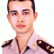 Michael Hanna Instant Professional English To Arabic Translation