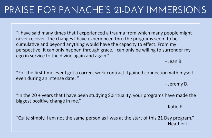 Panache Desai - 21 Day Immersion Program Testimonials