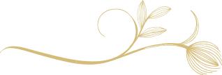 Panache Desai - 21 Gifts of Presence - Separator