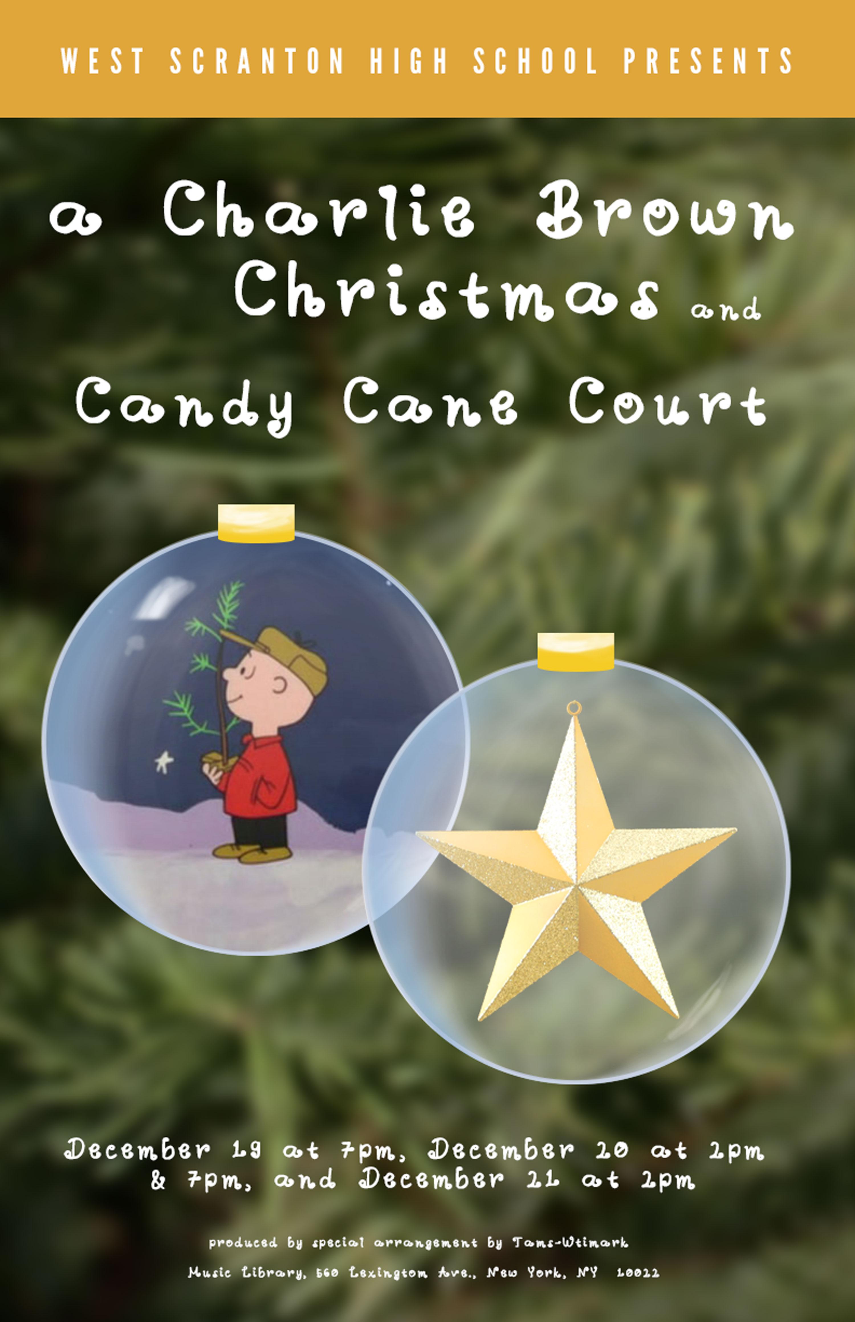 Poster Christmas Show