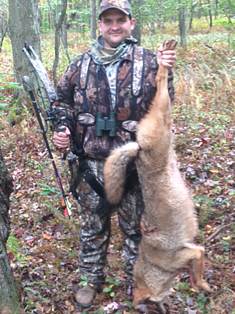 Matt S. Harvested this coyote first week of PA archery season.