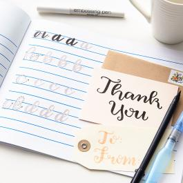 Virtual Workshop: Brush Lettering