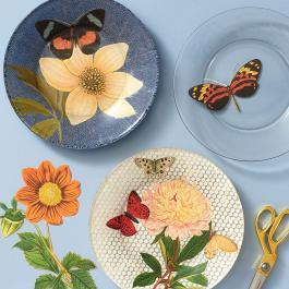 Virtual Workshop:DIY Decoupage Plate