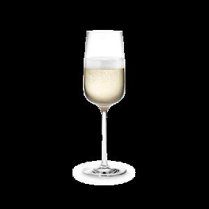 Bouquet samppanjalasi 1 kpl 29 cl