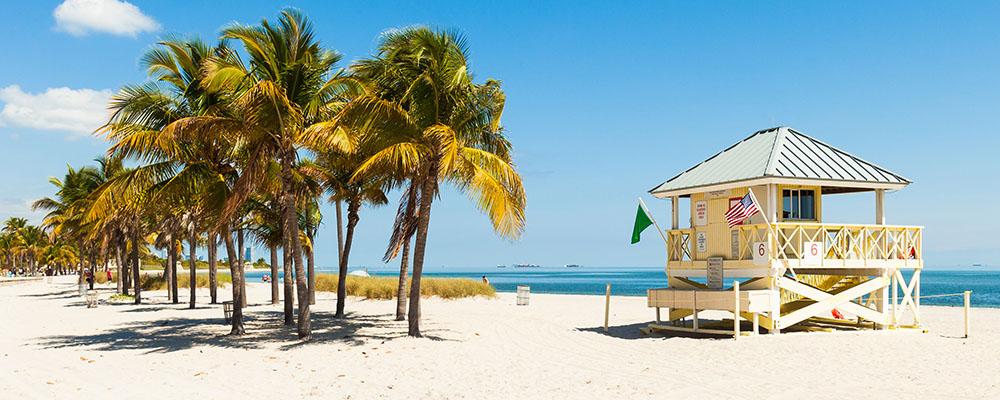 Playa del Carmen & Miami