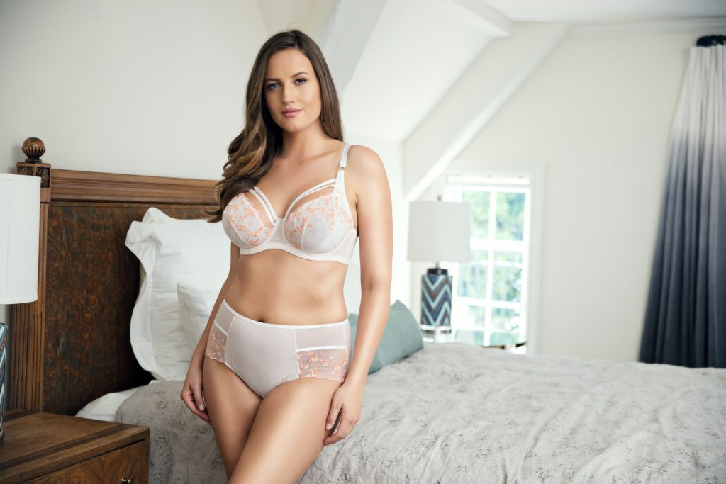 sheer embroidered bra