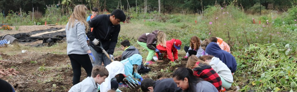 Civic Engagement and Service Learning in the Lower School