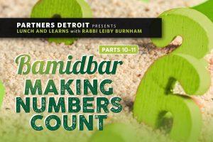 Bamidbar – Making Numbers Count Part XI: Who Believes in You