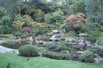 Holland Park - Outdoor Activity | Park in London.
