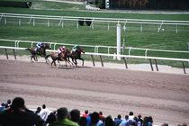 Belmont Park - Race Track in New York.