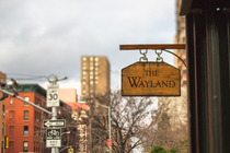 The Wayland - Cocktail Bar | Restaurant in New York.