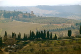 Chianti Region - Culture | Drinking Activity | Outdoor Activity | Winery in Florence
