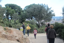 Park Güell - Culture | Outdoor Activity | Park in Barcelona.