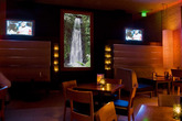 Nikki's Venice Beach - Club | Lounge | Sports Bar in Los Angeles.