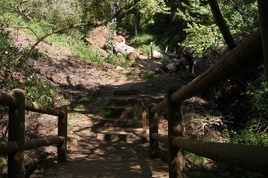 Franklin Canyon Park - Outdoor Activity | Park in Los Angeles.