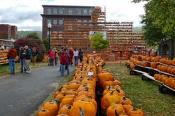 Keene Pumpkin Festival 2014 | Oct 18, 2014 | New Hampshire