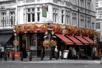The Red Lion - Pub | Historic Bar in London.