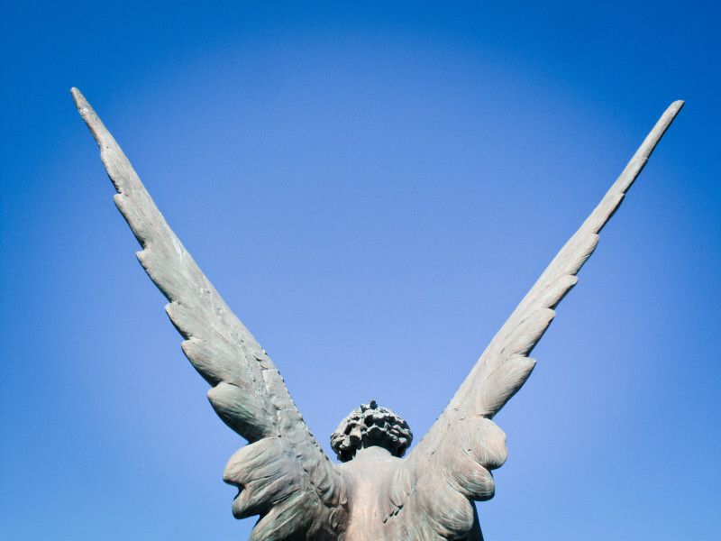 What It Takes to Get Angel Investment