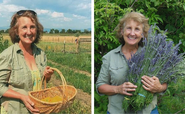 Cindy Jones on the Colorado Aromatics Farm