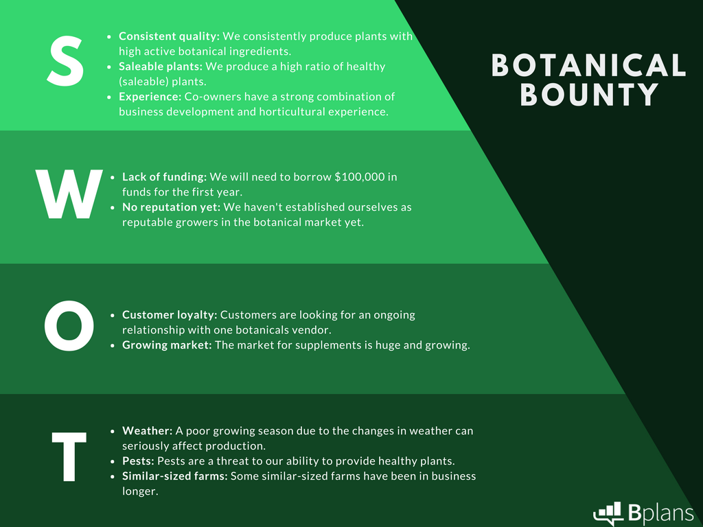 SWOT Analysis For Botanical Bounty