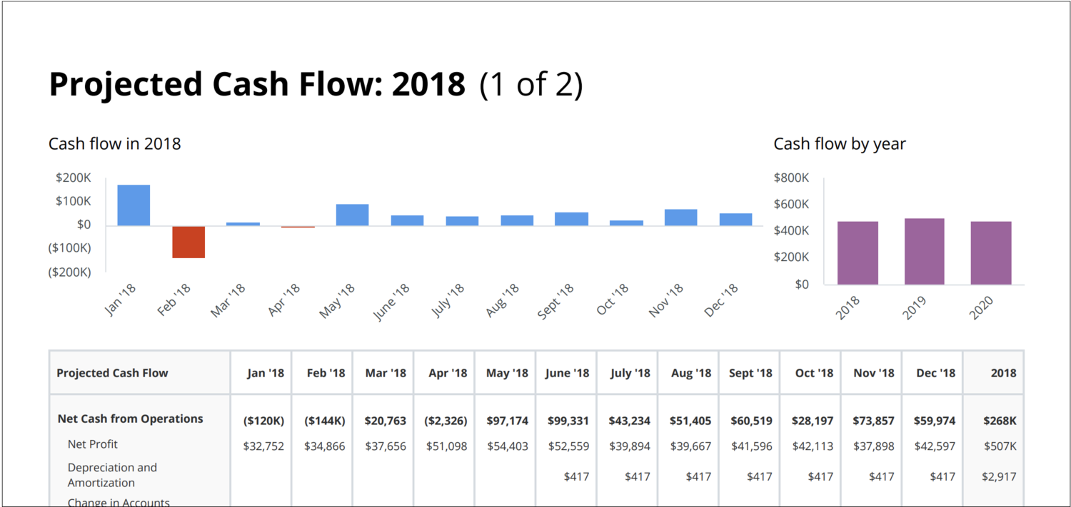 cash flow report