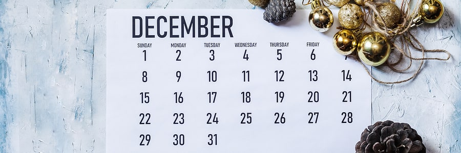 celebrate national write a business plan month in december