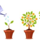 10 Proven Ways to Grow Your Small Business