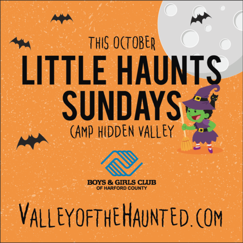 2017 Little Haunts at Camp Hidden Valley poster