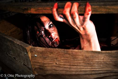 BloodShed Farms Fear Fest 2017 image