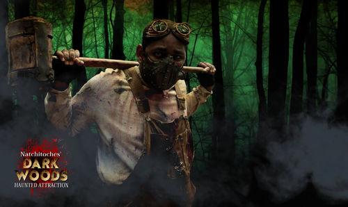 Dark Woods Haunted House 2017 image