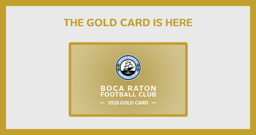 2018 Season Passes NPSL - Gold Card image