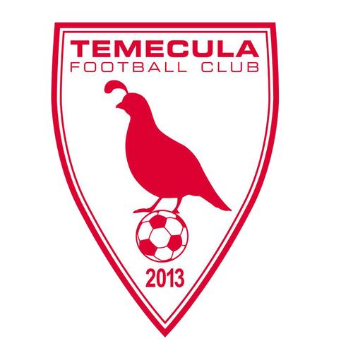 Temecula FC 2019 Season Ticket image