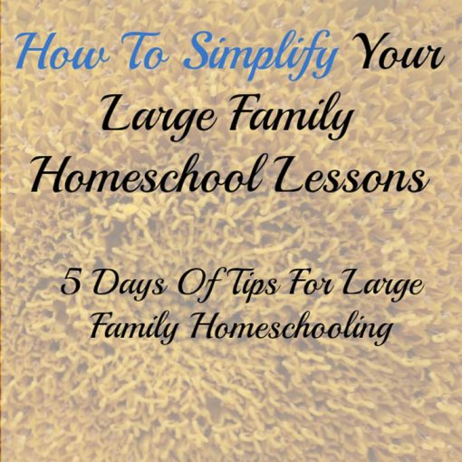 How To Simplify Your Homeschool Lessons