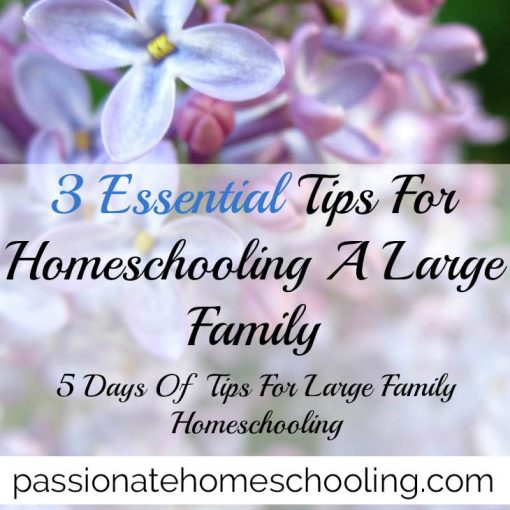 Tips For Homeschooling Large Families