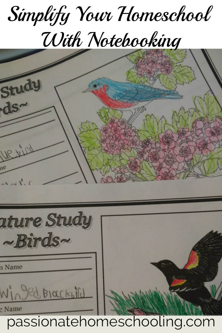 Simplify Your Homeschool Lessons With Notebooking