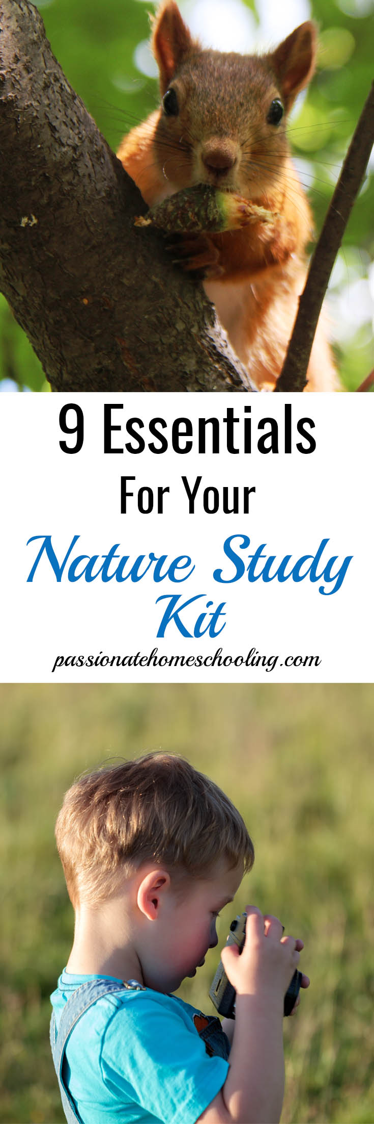 9 Essentials For Your Nature Study Kit. Have fun with your nature study by keeping everything on hand and ready to go. www.passionatehomeschooling.com