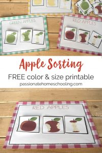 Free printable apple sorting mats. Help your child practice color sorting with these red, green, and yellow apple printables. Great color practice for homeschool, toddlers and preschoolers. 1 color for each color and apple cards. Cards can be used to sort by color or size. #homeschooling #toddler #preschool #freeprintable