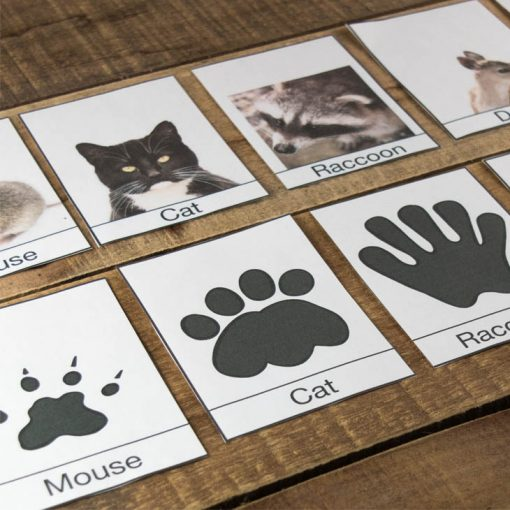 Printable winter animal footprint cards