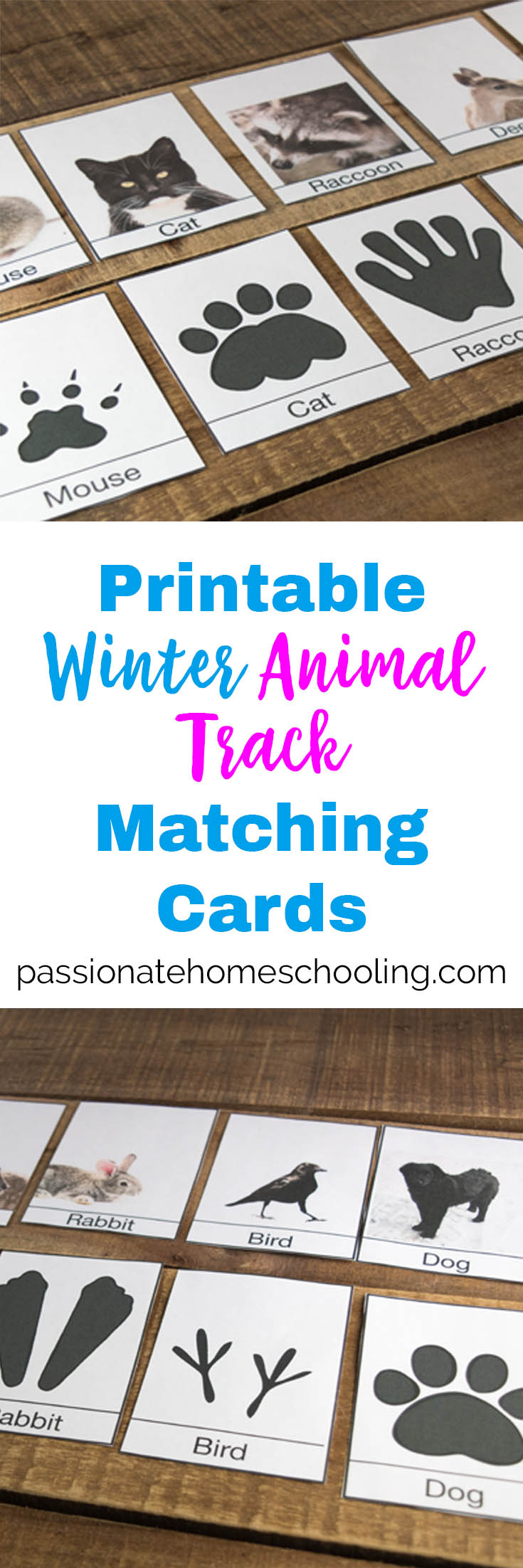 I love these free printable animal track cards, they are perfect for helping kids to identify animals around your home in the winter. A great animal matching game for preschool to 2nd grade. #freeprintables #homeschool #preschool #naturestudy #unitstudy