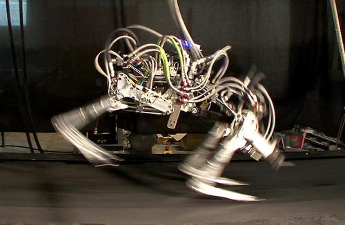 Google's Robotics Purchases