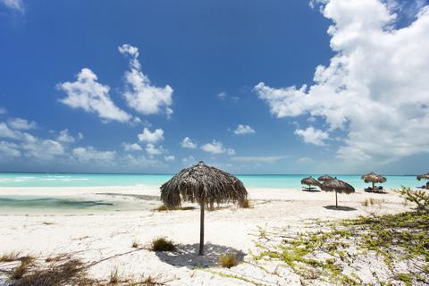 Pecci Distalnet Blue Panorama Airlines confermiamo Leadership Su Cuba