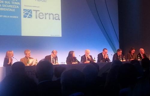 Giuseppe Lasco, Terna: trovare la sintesi tracrescita economicaesalvaguardia dell'ambiente