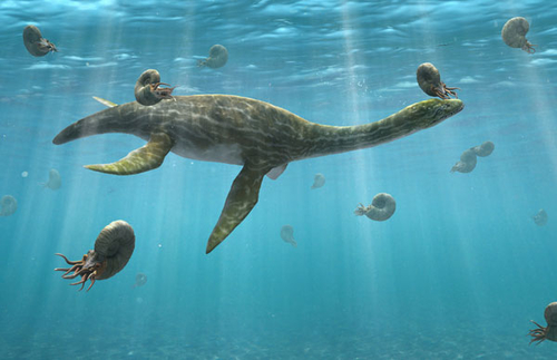Plesiosaurs and the trouble with palaeontology