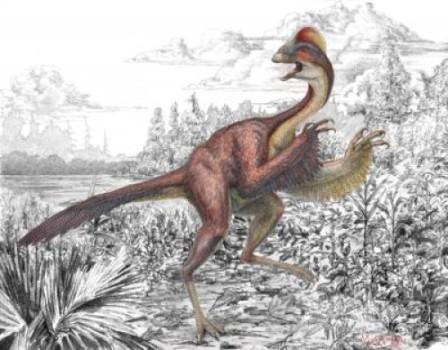 Everyone loves a new dinosaur