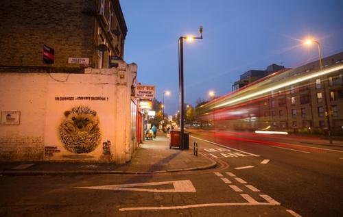 Street art raises awareness of the state of UK wildlife